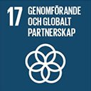 17 Genomforande och globalt partnerskap